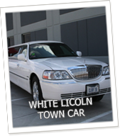 Edmonton Limo White Lincoln